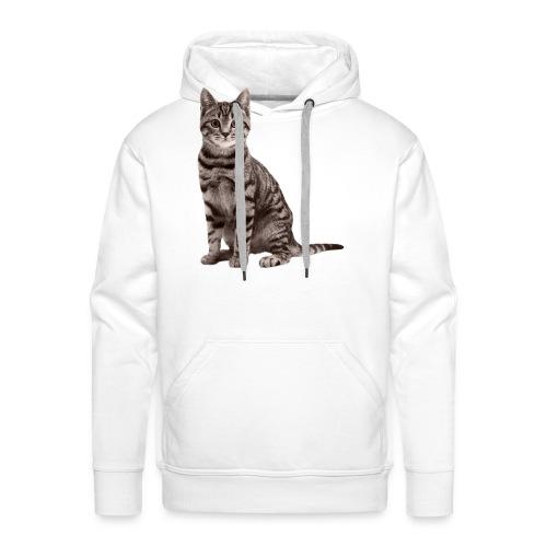 Cute cats (full set) - Men's Premium Hoodie