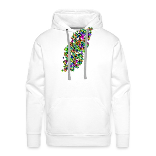 Colorful butterflies - Sweat-shirt à capuche Premium pour hommes