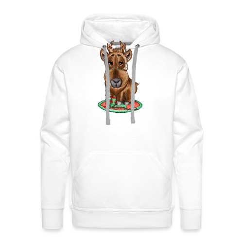 Reindeer refined scribblesirii - Herre Premium hættetrøje