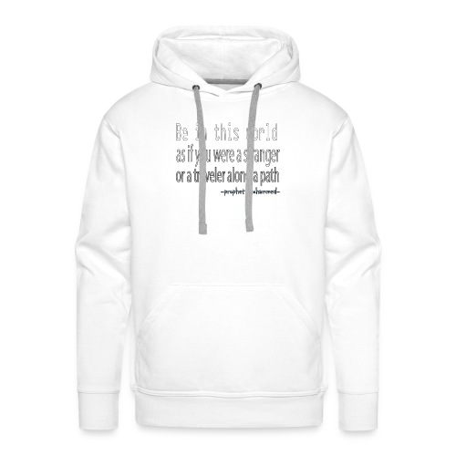 be in the world - Sweat-shirt à capuche Premium pour hommes