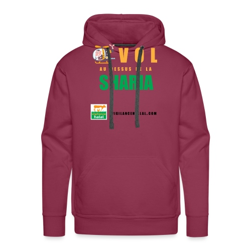 volaudessus - Sweat-shirt à capuche Premium pour hommes