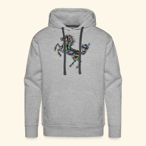 Power of Colors - Männer Premium Hoodie