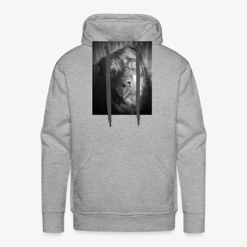 PACO ROTTWEILER ADOPTION - Sweat-shirt à capuche Premium pour hommes