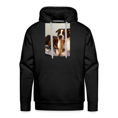 American Staffordshire Terrier - Männer Premium Hoodie