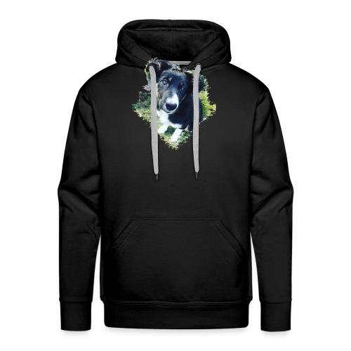 colliegermanshepherdpup - Men's Premium Hoodie