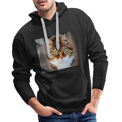 cat 300572 1920 - Sudadera con capucha premium para hombre