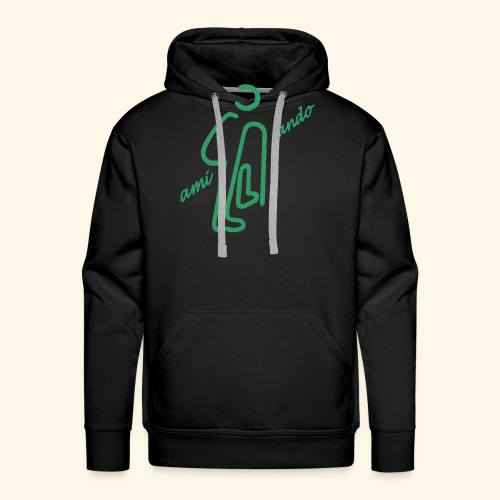 Amirando19 vert bleu - Sweat-shirt à capuche Premium pour hommes