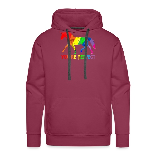 Regenbogen Einhorn - You´re perfect - Männer Premium Hoodie