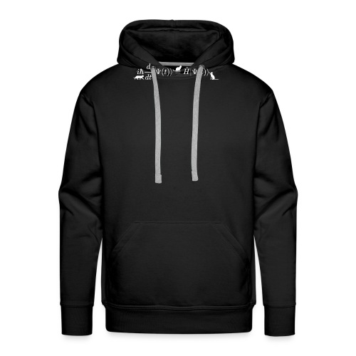Schrodinger cats math and physics formula equation - Men's Premium Hoodie