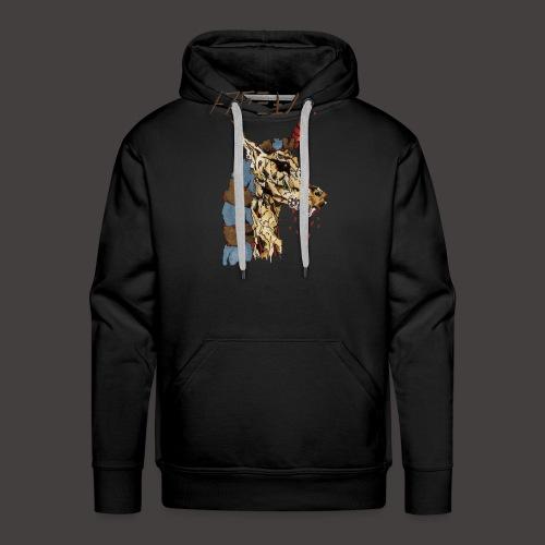 Anubis gold - Sweat-shirt à capuche Premium pour hommes