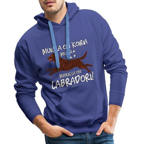 Labradori Koiria 2 - Miesten premium-huppari