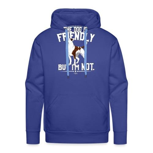 ABfriendly3 - Men's Premium Hoodie