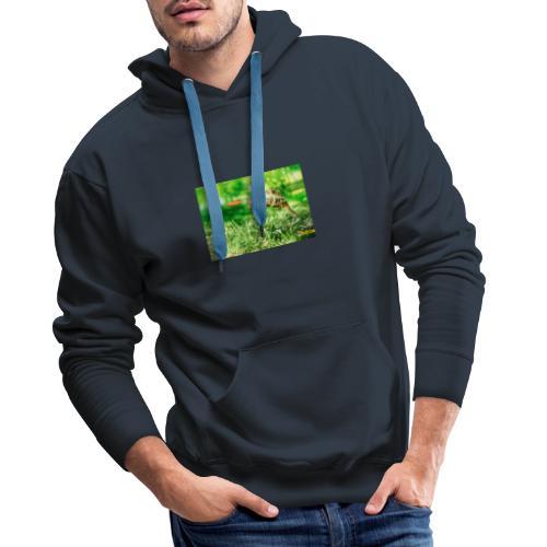 Żołw aportujący frisbee - Bluza męska Premium z kapturem