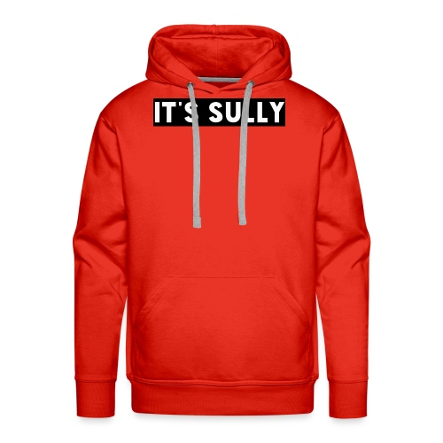 Its sully - Men's Premium Hoodie