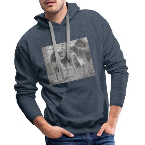 Irish Wolf hound - Herre Premium hættetrøje