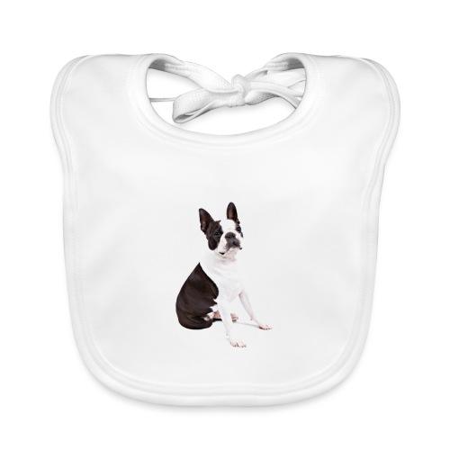 Boston-Terrier-Nice-Pic - Bavaglino ecologico per neonato