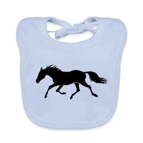 Cavallo - Bavaglino