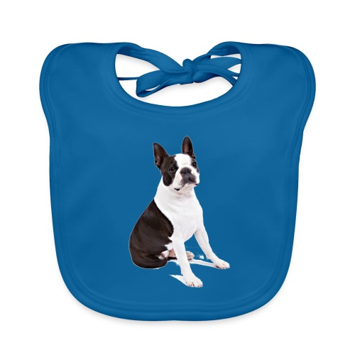 Boston-Terrier-Nice-Pic - Bavaglino