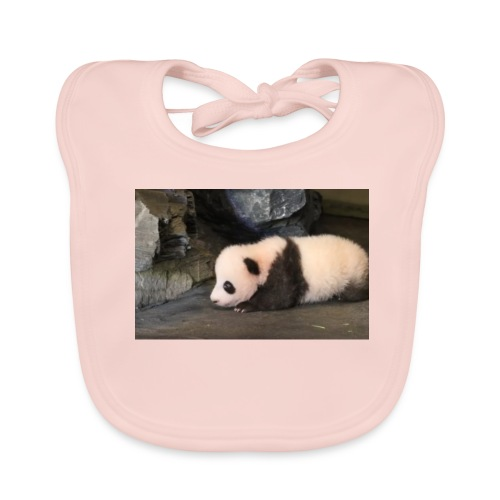 648x415 petite femelle panda nee debut juin 2016 z - Bavoir bio Bébé