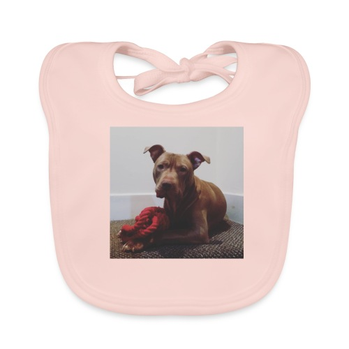 Hank with chew toy ❤️ - Baby Organic Bib