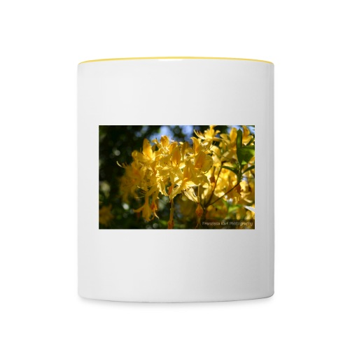 Yellow Lilles - Contrasting Mug