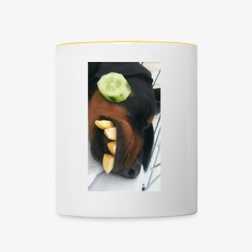 Dobermann Wellness - Tasse zweifarbig