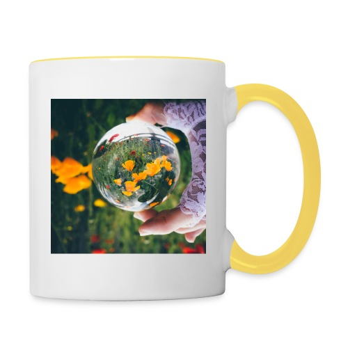 29052015 IMG 9090 Modifier jpg - Mug contrasté
