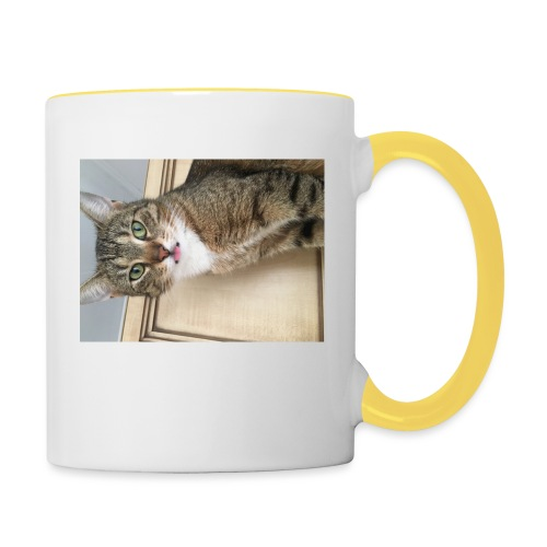 Kotek - Kubek dwukolorowy