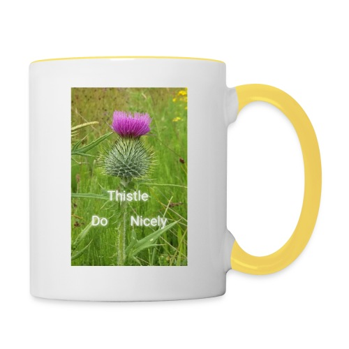 IMG 20180301 221949 Thistle Do Nicely - Contrasting Mug
