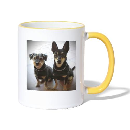 Cani - Tazze bicolor