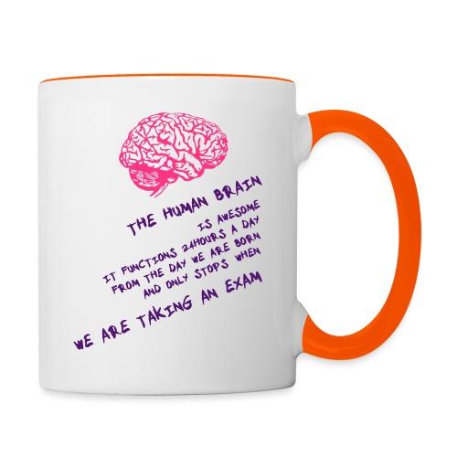 Human Brain - Tazze bicolor