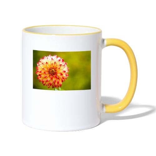 Blomst - Tofarvet krus