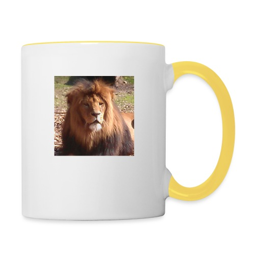 Lejon - Tvåfärgad mugg