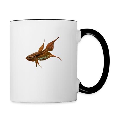 Betta dimidiata - Contrasting Mug