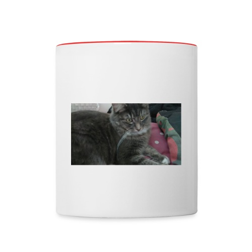 Sansa jpg - Contrasting Mug