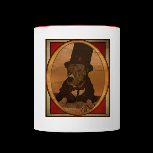 Magician Pitbull - Mug contrasté