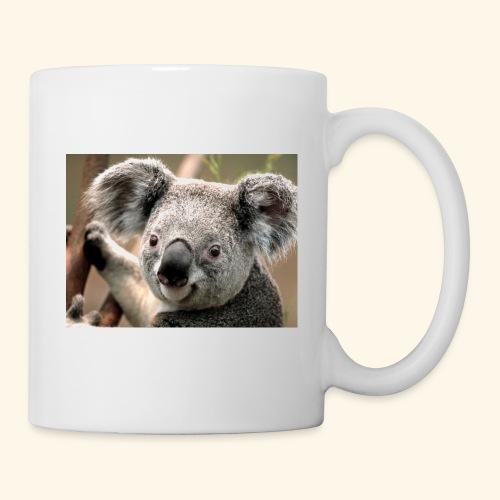 Koala - Tasse