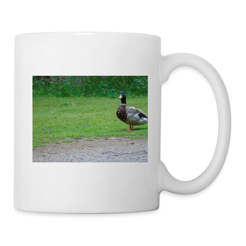 A wild duck - Mug
