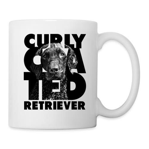 Curly Coated Retriever II - Muki