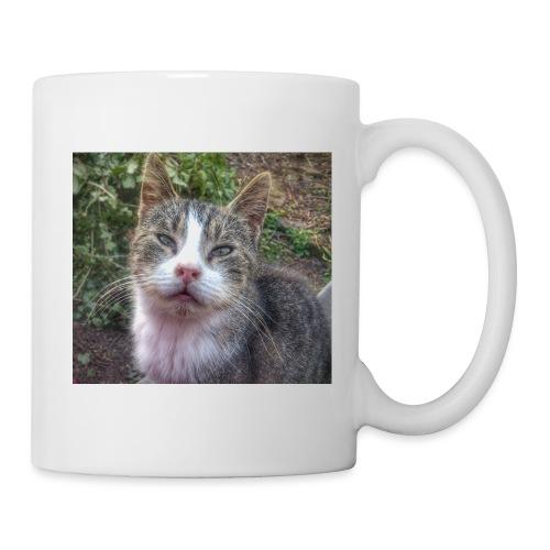Katze Max - Tasse