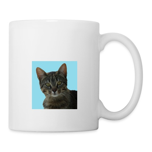 gattino curioso - Tazza