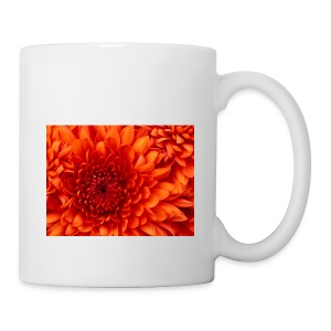 Chrysanthemum - Tazza