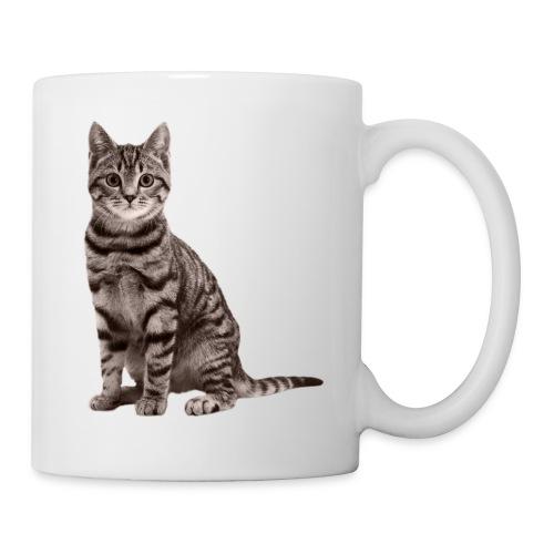 Cute cats (full set) - Mug