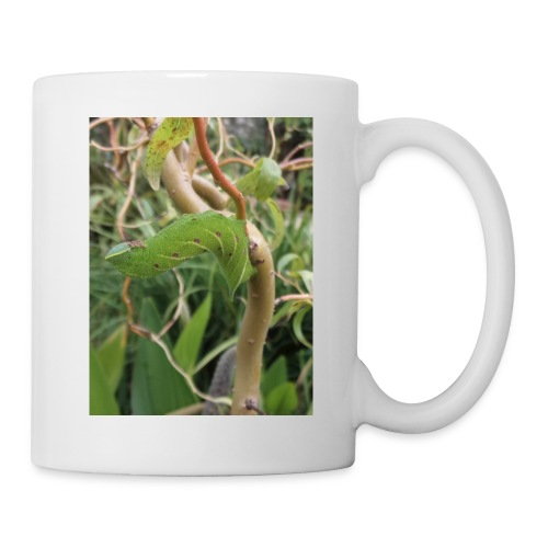 hawk moth caterpillar - Mug