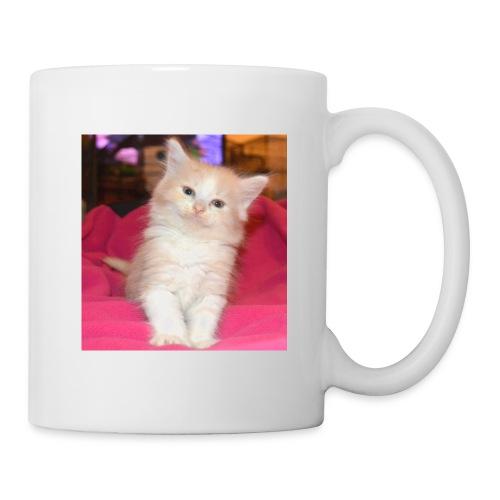 DSC 0048 - Mug