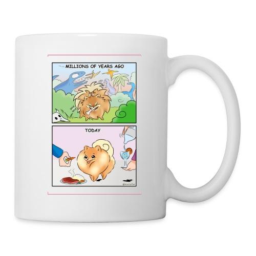 Pomeranian History - Tazza