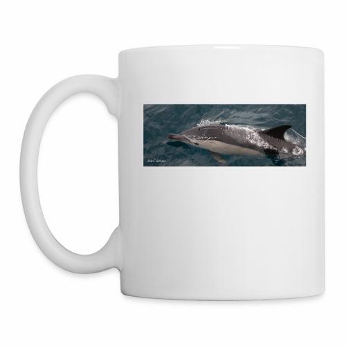 delfin comun - Taza