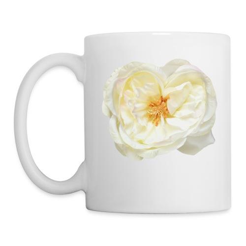 Weiße Rose Blume Blüte - Tasse