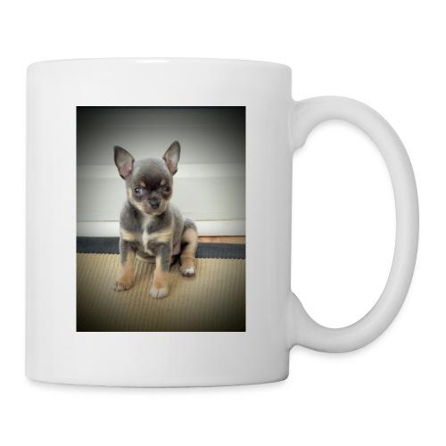 Cute Chihuahua Puppy - Mug