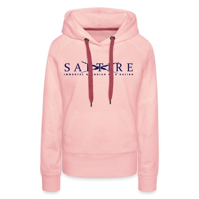 Saltire_Logo blue